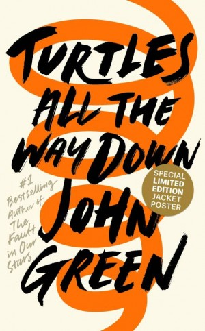 Turtles All the Way Down (John Green)
